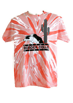 Unisex Heavy Cotton Pinwheel Tie Dyed T-Shirt