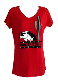 Ladies Sporty V-Neck T-Shirt