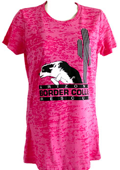 Ladies Crew Burnout T-Shirt